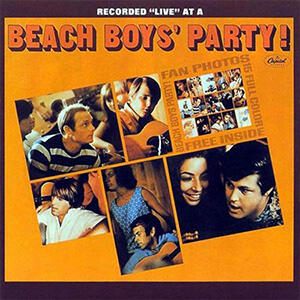 The Beach Boys -The Beach Boys' Party!  --  STEREO mix - LP 33 giri su vinile 200 grammi - Made in USA