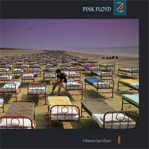 Pink Floyd - A Momentary Lapse of Reason  --  LP 33 giri su vinile 180 gr.  MADE IN USA