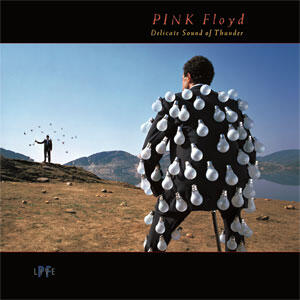Pink Floyd - Delicate Sound of Thunder (Live)  --  Doppio LP 33 giri su vinile 180 gr. - Made in USA