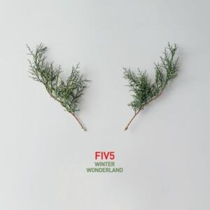 FIV5 - Winter Wonderland Jazz for Christmas -- CD Made in EU by TRJ Records - Temi natalizi in Jazz